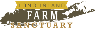 Long Island Farm Sanctuary